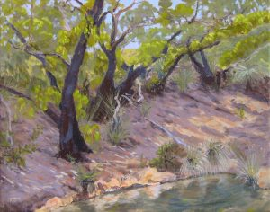 2012-landscapes-outdoor painting-Philippa Robert-Adelaide South Australia-Recovery Kangaroo Island