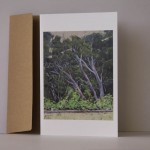from the farmhouse Kangaroo Island CARD Philippa Robert AdelaideSouthAustralia