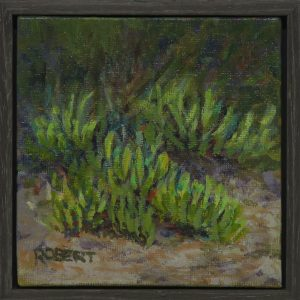 framed-pigface Brighton dunes-outdoor painting-Philippa Robert-Adelaide South Austraslia