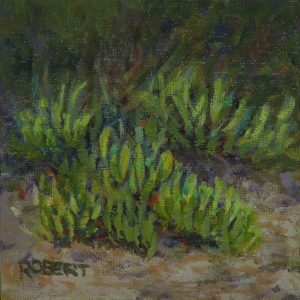 pigface, Brighton dunes-outdoor painting-Philippa Robert-Adelaide South Australia